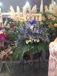 A stand with beautiful blue flowers, with a sign that reads GACKT and Root.